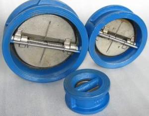 bileaflet-valve