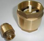 Клапан обратный пружинный